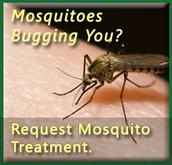 Mosquitoes bugging you? Request Mosquito treatment.